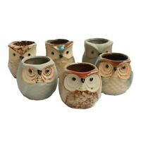 Mini Ceramic Owl Succulent Plants Potted Flowers Planting Home Decoration Office