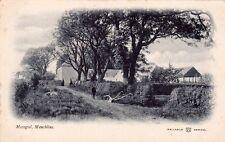 UK SCOTLAND AYRSHIRE MOSSGIEL MAUCHLINE UNDIVIDED BACK POSTCARD CIRCA 1905