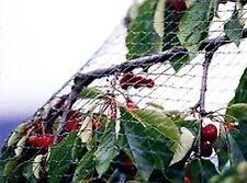 Rete per Giardino Alberi Frutta Anti Uccelli Protettiva 2 x 100 m x 2