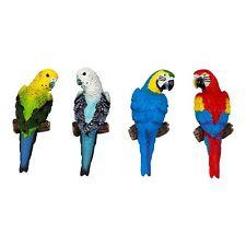 Set of 4 Wall-mountable 16cm Tropical Parrot & Parakeet Bird Garden Ornaments