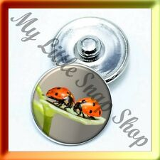 (Cart ANY 4 , 2 w/be FREE) SPRING LADYBUGS ON LEAF Snap Button Charm