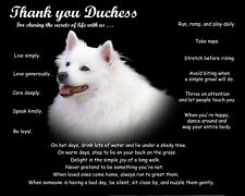 American Eskimo Dog Picture/Wall Art-Personalized w/Name-Unique Pet Lover's Gift