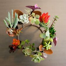 Designer Succulent Cuttings - Mixed Pack of 15 - Gift Set - NSW ACT VIC SA QLD