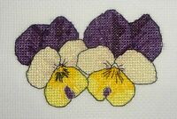 Pansies Pansy Viola modern counted cross stitch pdf pattern chart flower card