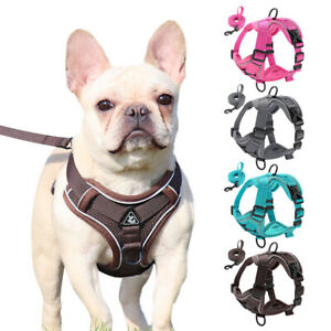 No Pull Dog Harness and Lead Front Clip Mesh Vest Reflective Cat Walking Jackets