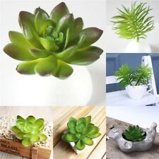 Plastic Miniature Simulation Mini Succulent Plants Garden Home Officer. Pop.