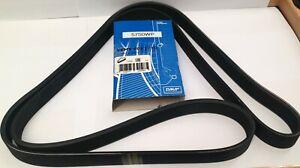 Drive / Auxiliary belt Peugeot 307, Citroen C4 ( 6PK 1710)