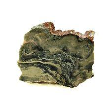 Rodingite à hydrogrossulaire, Diopside, Chlorite 314.3 ct. Canari, France. Rare