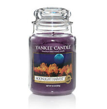 Yankee Candle - 22oz - MOONLIGHT HARVEST - Great Fall Scent!!  HARD TO FIND!!