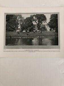Photo 1924: Farm Near Wigton Cumberland Denbigh Castle Rock Hill 96 Yrs Print
