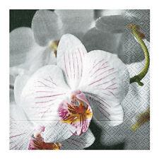 Servietten Beautiful Orchid 20 Stk Papierservietten Lunchservietten Hochzeit