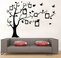 US Cozy Family Tree Wall Decal Sticker Vinyl Photo Picture Frame Removable