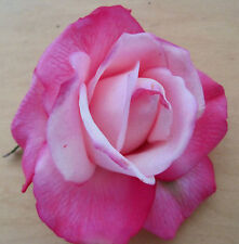 """4"""" Variegated Pink Poly Silk True Touch Rose Flower Hair Clip, Wedding, Prom"""
