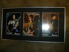 IBANEZ gary willis BENNY RIETVELD Santana doug wimbish guitar PHOTO SIGNED chris