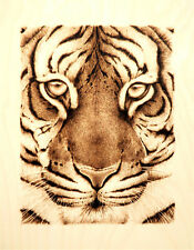 TIGER FACE- BIG CAT ART- ORIGINAL ANIMAL DRAWING - PYROGRAPHY/WOODBURNING