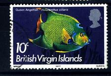 BRITISH VIRGIN ISLANDS - ISOLE VERGINI - 1975 - Pesci
