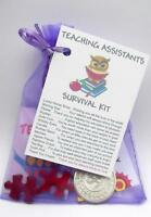 TEACHER SURVIVAL KIT FUN THANK YOU LEAVING GIFT JOB EMPLOYMENT CHRISTMAS CARD ..