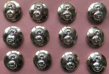 12 Royal Highland Fusilier Buttons