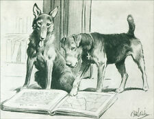 German Shepherd & Airedale Terrier WWI DOGS by Dicky LARGE New Blank Note Cards