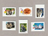 DOMESTIC CATS = KITTEN = 6 UNIQUE postage stamps MNH Canada 2016 [p16/03dc6]