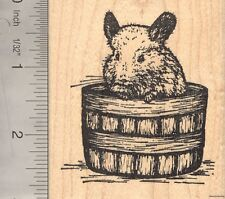 Chinchilla Rubber Stamp, in Bucket  K2713 WM