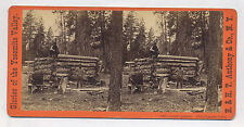 C-1870's PHOTOGRAPHY CABIN OF T. C. ROCHE IN YOSEMITE, E. H. ANTHONY STEREOVIEW