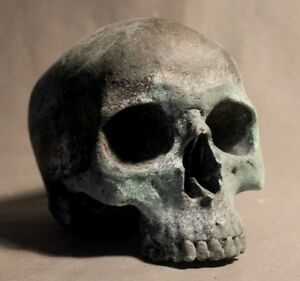 Human Skull Anatomical Medical Death Oddity Theater Doctor Funeral Postmortem