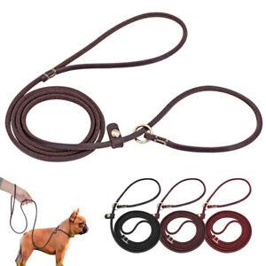 Dog Slip Lead Slip On Rope Leather Puppy Pet Leash Adjustable No Collar Needed
