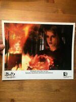 Buffy Elizabeth Anne Allen hand signed autograph 8x10 photo IP