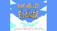Adventures of Tom Sawyer Nintendo Nes Cleaned & Tested Cart Only Authentic