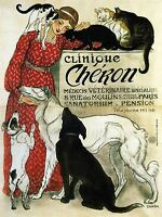 ADVERT CAT DOG VETERINARIAN MEDICINE PARIS FRANCE POSTER ART PRINT BB1723A