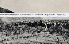 Gabweiler Guebwiller-weinberg baignoire-Alsace Alsace de 1935-rare! N 5-10