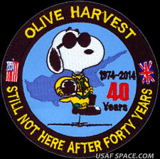 USAF 1st RECONNAISSANCE SQ - OLIVE HARVEST - 40 YEARS -U-2 - RQ-4 - SNOOPY PATCH