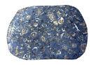 Grosse Fossilien Platte, Tischplatte
