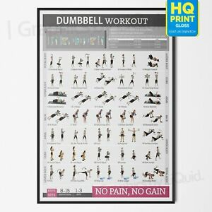 Dumbbell Workout Fitness Training Chart Exercise Poster PRINT *LAMINATED* A4 A3