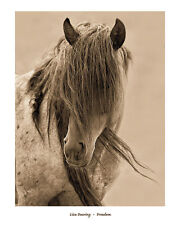 FREEDOM ART PRINT BY LISA DEARING horse western mane animal country sepia poster