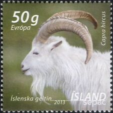 Iceland 2013 SEPAC/Goat/Farming/Domestic Animals/Nature/Post/Mail 1v (is1082)