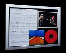 RED HOT CHILI PEPPERS Scar Tissue LTD Nod CD GALLERY QUALITY FRAMED DISPLAY!!