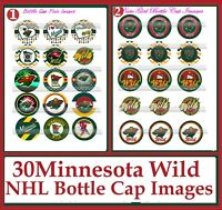 Pre Cut One Inch Bottle Cap Images STAINED GLASS FROZEN PRINCESS Free Shipping