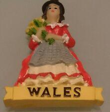 Wales resin plastic Fridge Magnet