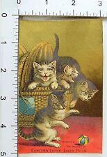 Carter Medicine Co Carter's Little Liver Pills Basket Of Cats Frisky Ball F68