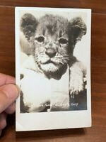 Vintage RPPC of Gay's Lion Farm El Monte, California 1928