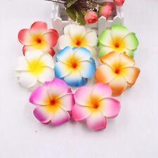 Women Plumeria Flower Hair Clip Accessories Barrette Hawaiian Wedding Party