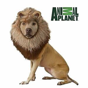 Dog Animal Planet Wild Animal King Of The Jungle Costume Headpiece Lion Mane M