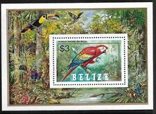 BELIZE, QE11, 1984 PARROTS, MIN SHEET SG MS 810, MNH, CAT 3.25 GBP