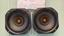 Audio Nirvana Super-8 full range speaker pair