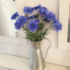 Unbranded Potted Bunches Flowers