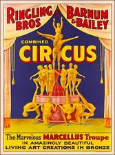 Ringling Brothers Marcellus Troupe Vintage Circus Travel Advertisement Poster