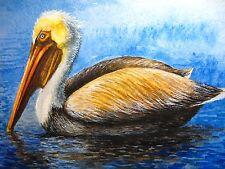 Watercolor Painting Pelican Ocean Bird Feathers Florida Wildlife 5x7 Art