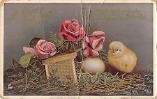 BR72038 easter chick egg flower rorse bent    uk